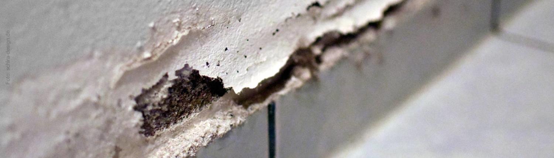 Feuchte Wand? Thermodetect GmbH (aus Hiddenhausen bei Herford) findet die Ursache