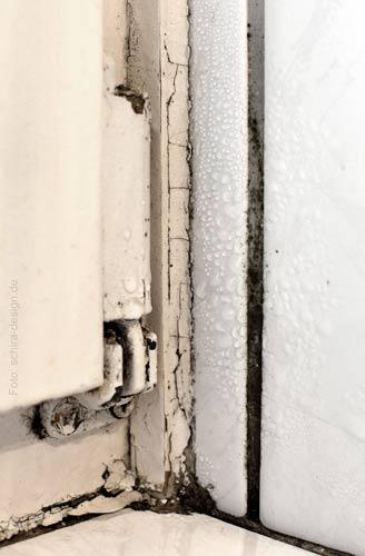 Kondensatschaden im Bad: Schimmel in einer Fuge / schimmlige Fugen - Thermodetect findet die Ursache