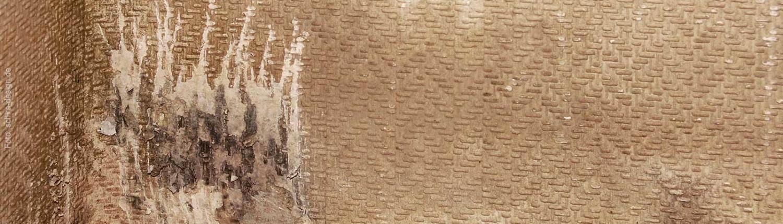 Kondensatschaden und Schimmel - die Ursache einer schimmligen Wand findet Thermodetect GmbH